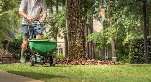lawn fertilizing Rogers MN