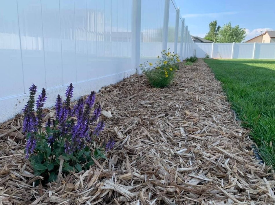 mulch, shrubs & edging in a back yard